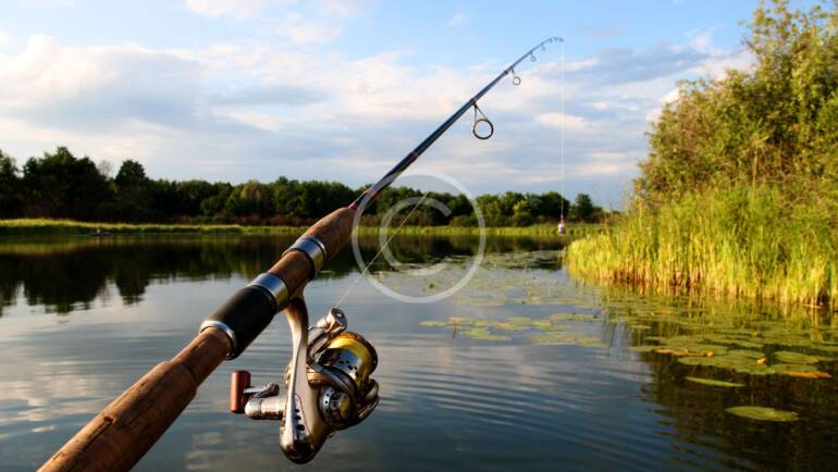 Tips When Buying a Fishing Pole